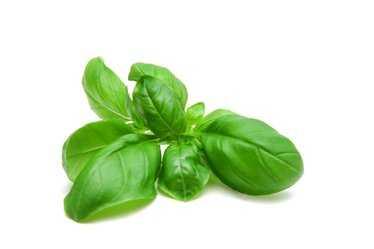 Zelfgekweekte kruiden voor jouw gezondheid