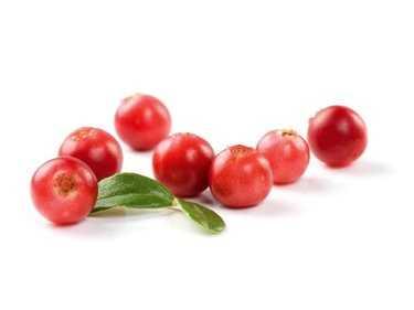 Cranberries kweken