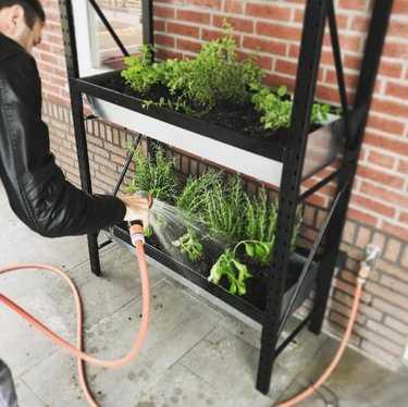 Tips voor jouw balkon- of daktuin