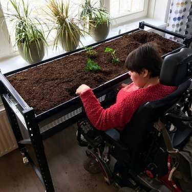 Moestuinieren vanuit een rolstoel