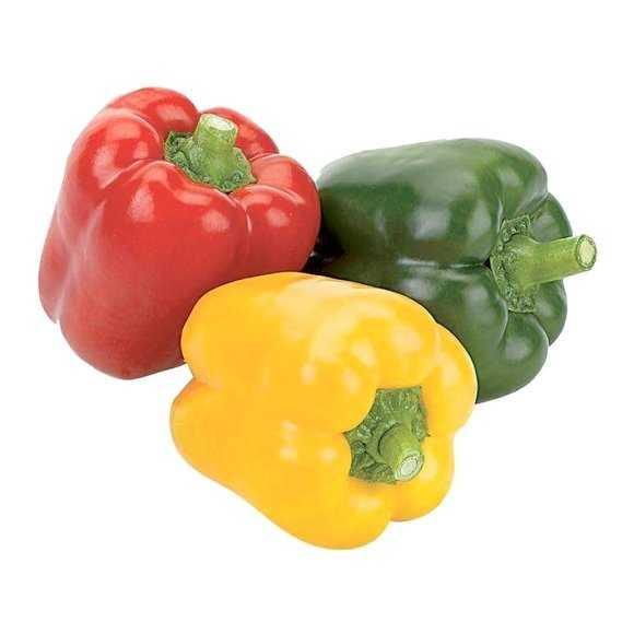 Paprika kweken