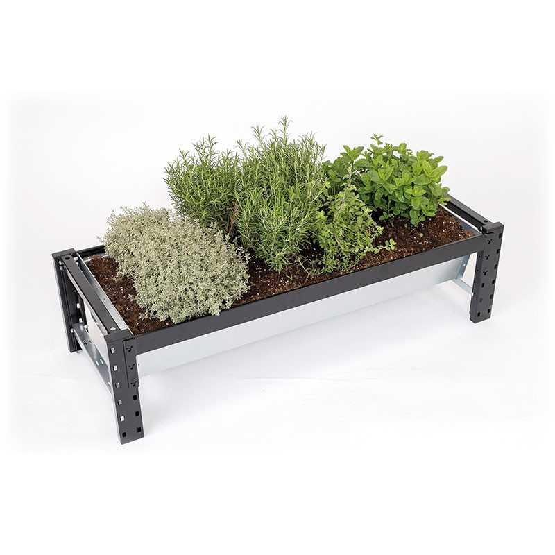 Voorkeur Moestuinbak | Iedereen kan verse groenten kweken | Vertisign NF46